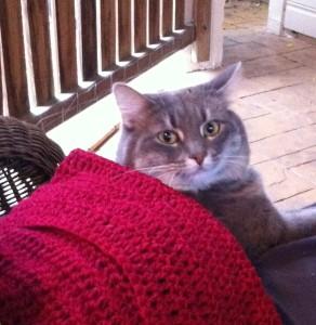 Mimi crocheting